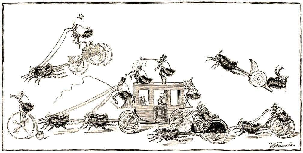 Flea Circus, ecological design